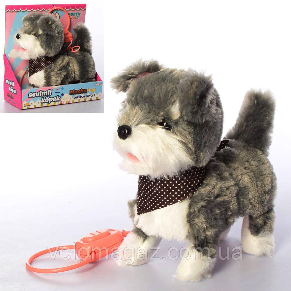 """Собачка на повідку, м'яка інтерактивна іграшка 26 см, """"Кращий друг"""" PL8203"""