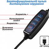 Набор LifeHack для TikTok MJ26 Rgb 26 см c штативом 2 м и Bluetooth кнопкой для телефона, фото 3