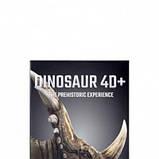 Обучающие карты Dinosaur 4D с дополненной реальностью Динозавры 4D, фото 2