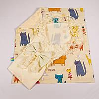 Конверт на выписку летний нежно молочный с кружевом + плед котики с молочным плюшем BabySoon 78х85см