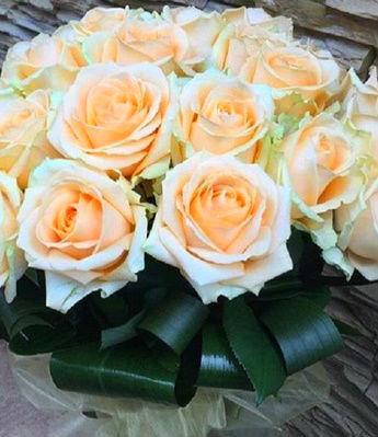 """Троянда ч/г """"Мерилин Монро"""""""