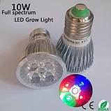 LED фитолампа для растений с полным спектром - 5 LED/ 220В., фото 2