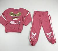 Детский трикотажный костюм (свитшот и штаны) для девочки рост 98/104 см (3-4 года) Розовый