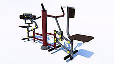 Тренажер рычажная тяга на бицепс, фото 2