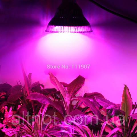 LED фитолампа для растений с полным спектром - 5 LED/ 220В.