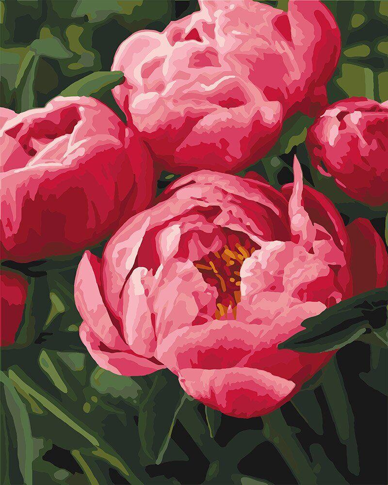 KH3049 Раскраска- картина по номерам Любимые цветы, Без коробки