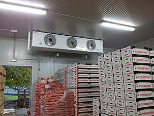 """Промышленно-бытовой фильтр """"под фланец"""" из сепаратором влаги FSU для холодильных камер, фото 2"""