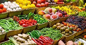 """Промышленно-бытовой фильтр """"под фланец"""" FSU для складских помещений хранения фруктов и овощей, фото 2"""