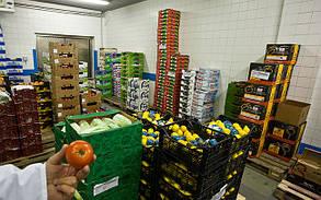 Бытовой воздушный фильтр FSU для складских помещений хранения фруктов и овощей, фото 3