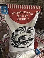 Семена гибрида  подсолнечника Обрион экстра 6,5мм,среднеранний, ЧП Семеноводческое