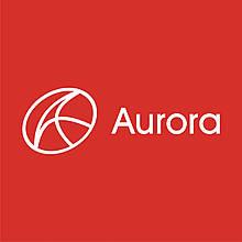 Хомут чохла ШРУС малий стрічка Aurora
