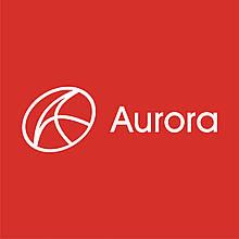 Хомут чохла ШРУС малий євро Aurora