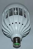 LED лампа, фото 4