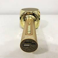 Беспроводной Bluetooth Микрофон для Караоке Микрофон DM Karaoke Y 63 + BT. Цвет: золотой, фото 5