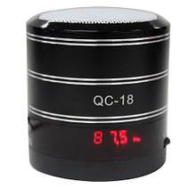 Портативная мини-колонка WSTER QC-18 MP3, USB, CardReader, pадио