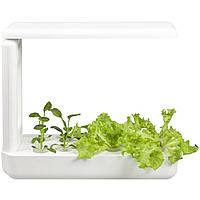 Гидропонное выращивание растений / проращиватель Vegebox BioChef Kitchen Box