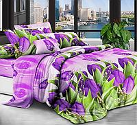 Полуторный комплект постельного белья 150х220 Ранфорс-хлопок 100% (14070)