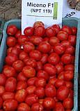 Мицено семена низкорослой сливки Syngenta Голландия 2500 шт, фото 4