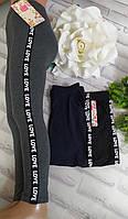 Штаны на девочку 3XL(10-11 лет) спортивные хлопок Золото (серый, синий, чорный цвет), фото 1