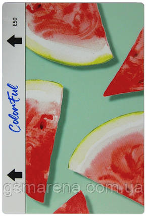 Гидрогелевая пленка для задней части ColorFul E50, фото 2