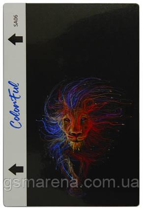 Гидрогелевая пленка для задней части ColorFul SA06, фото 2