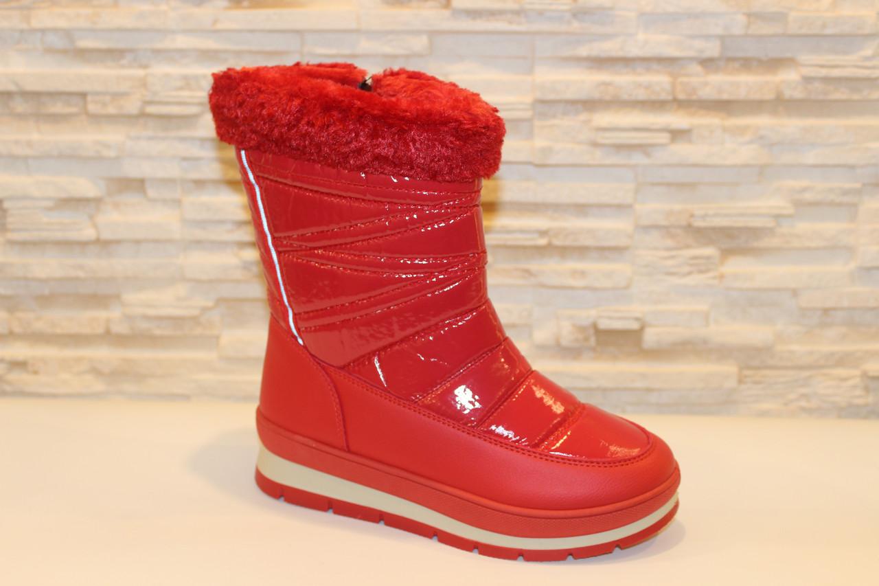 Сапоги дутики женские красные зимние С911