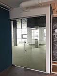 Цельностеклянная дверь, фото 2