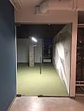 Цельностеклянная дверь, фото 4