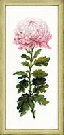 Набор для вышивки крестом Риолис 1425 Нежный цветок
