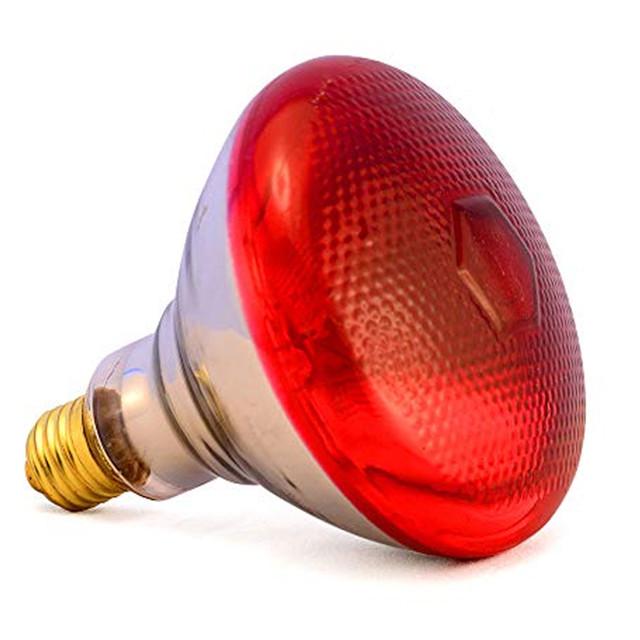 Инфракрасные лампы и брудера для обогрева поросят