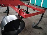Культиватор сплошной обработки STARmet 2 м тракторный, фото 5