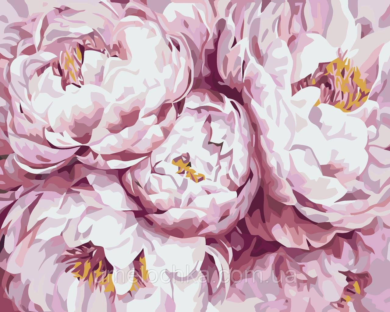 Картина по номерам Нежно-розовые пионы (KHO3013) 40 х 50 см Идейка (Без коробки)