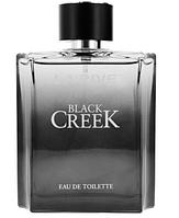 Туалетная вода мужская LA RIVE BLACK CREEK 100мл