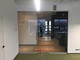 Цельностеклянная перегородка с дверью, фото 3