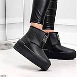 Ультра модные черные женские ботинки угги на молнии натуральная кожа 37-24 39-25см, фото 4