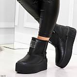 Ультра модные черные женские ботинки угги на молнии натуральная кожа 37-24 39-25см, фото 5