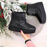 Ультра модные черные женские ботинки угги на молнии натуральная кожа 37-24 39-25см, фото 10