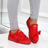 Яркие красные замшевые женские модельные кеды из натуральной замши, фото 5