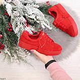 Яркие красные замшевые женские модельные кеды из натуральной замши, фото 10