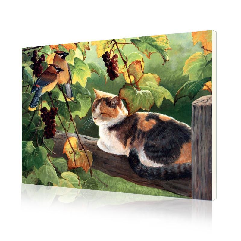 """Картина по номерам Lesko DIY E689 """"Трехцветный кот"""" 40х50 см картинки по номерам на холсте"""