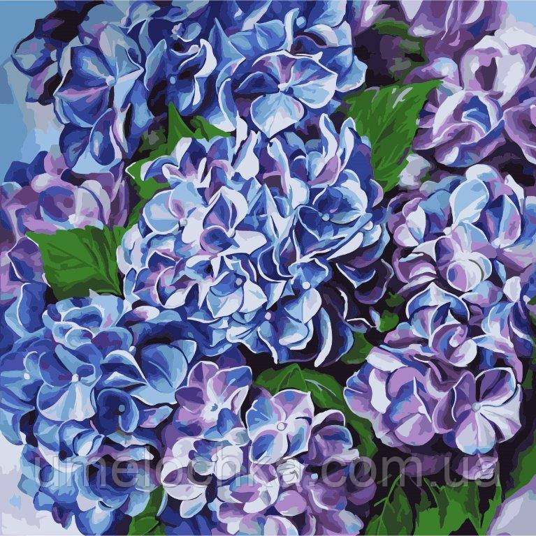 Картина по номерам Голубая гортензия (KH2079) 40 х 40 см Идейка