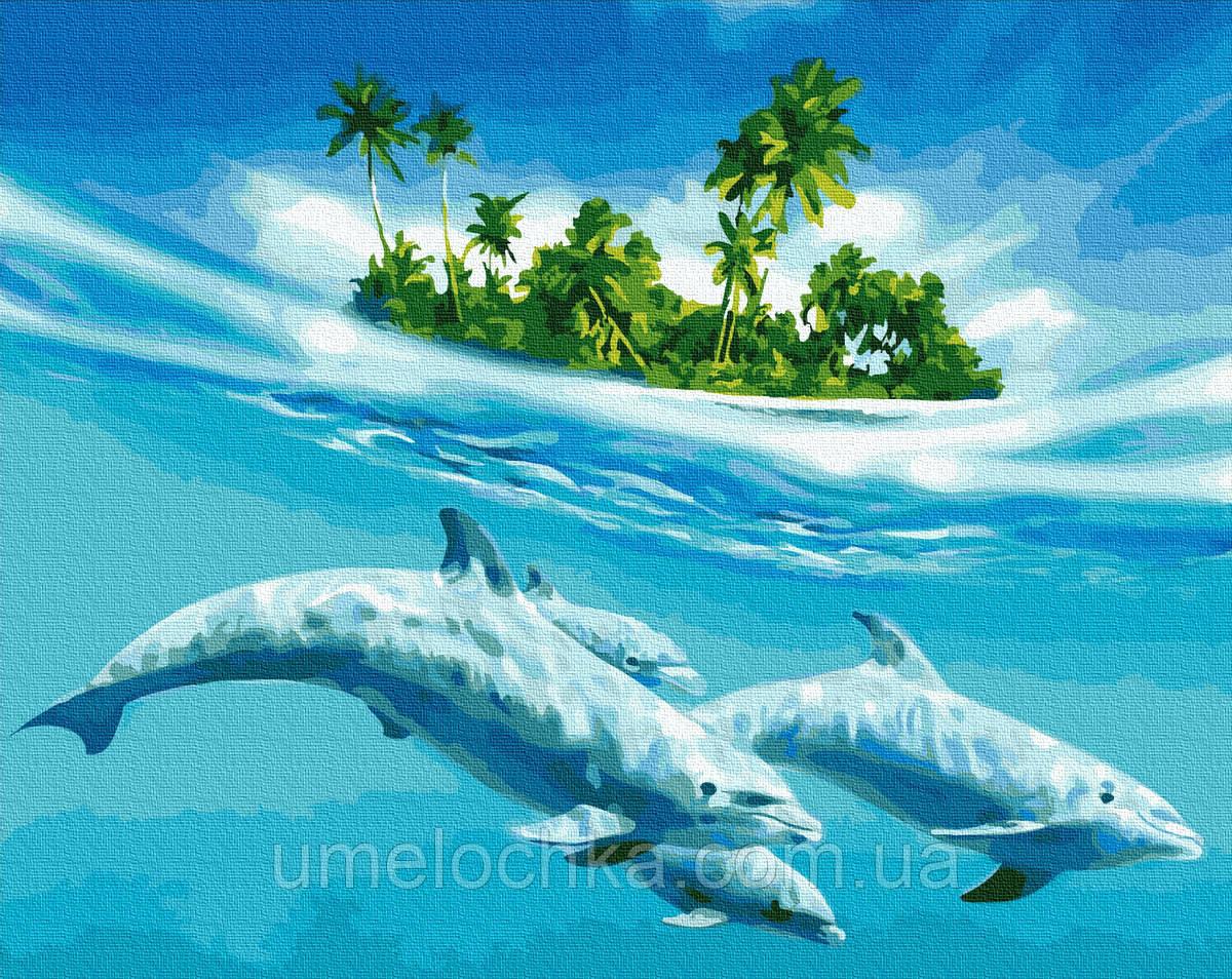 Картина по номерам BrushMe Плавание с дельфинами (BRM27574) 40 х 50 см