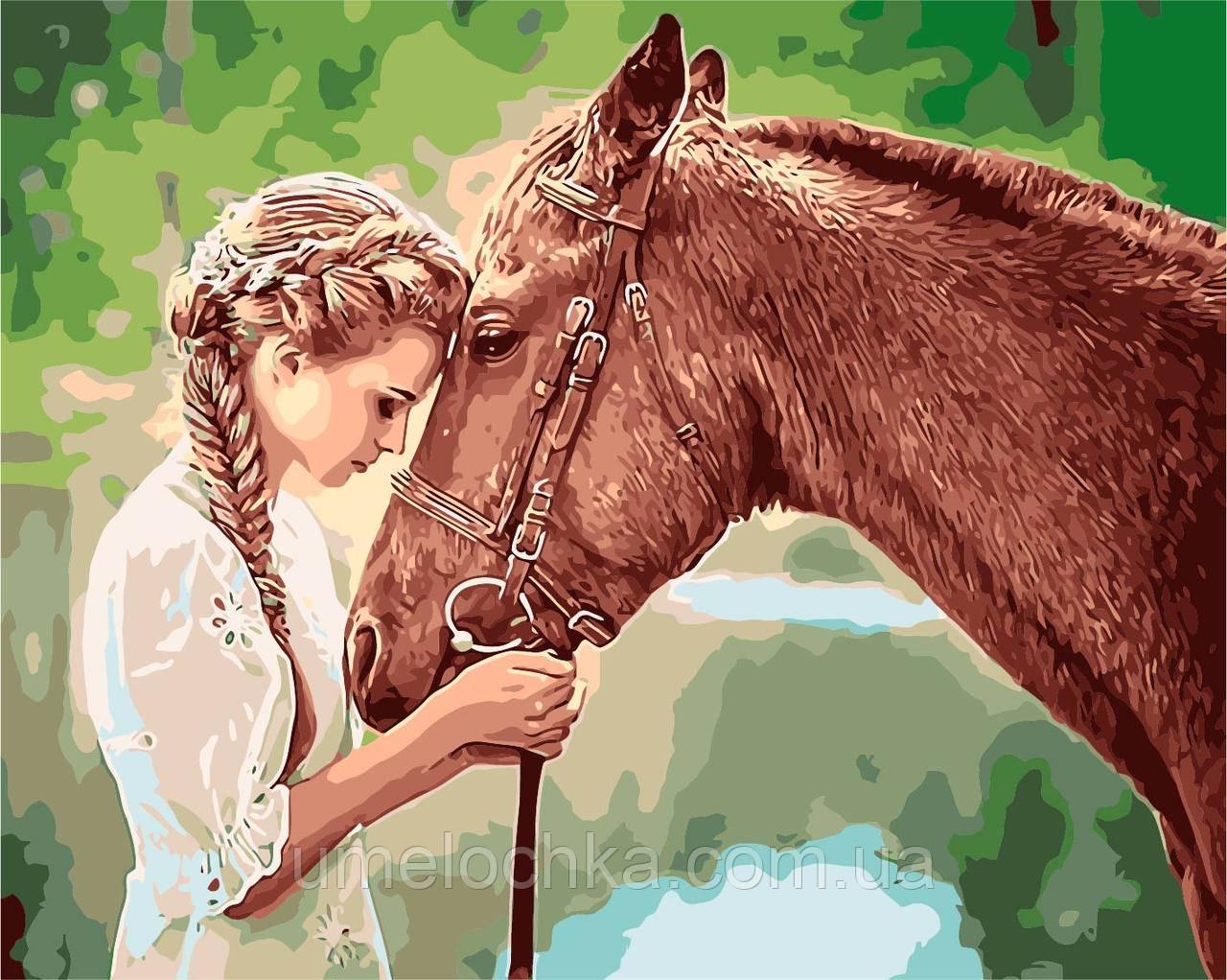 Картина по номерам  Девушка и лошадь (W4364) 40 х 50 см