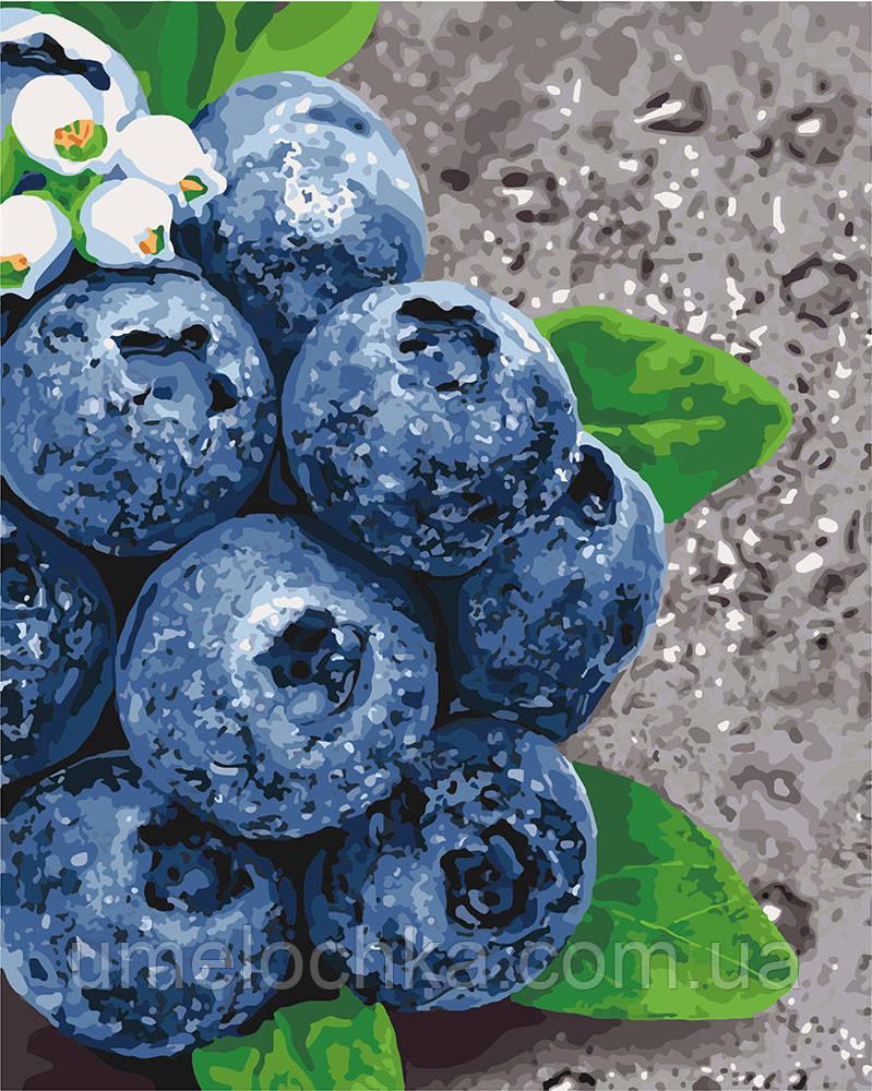 Картина по номерам Идейка Сочные плоды (KH5581) 40 х 50 см