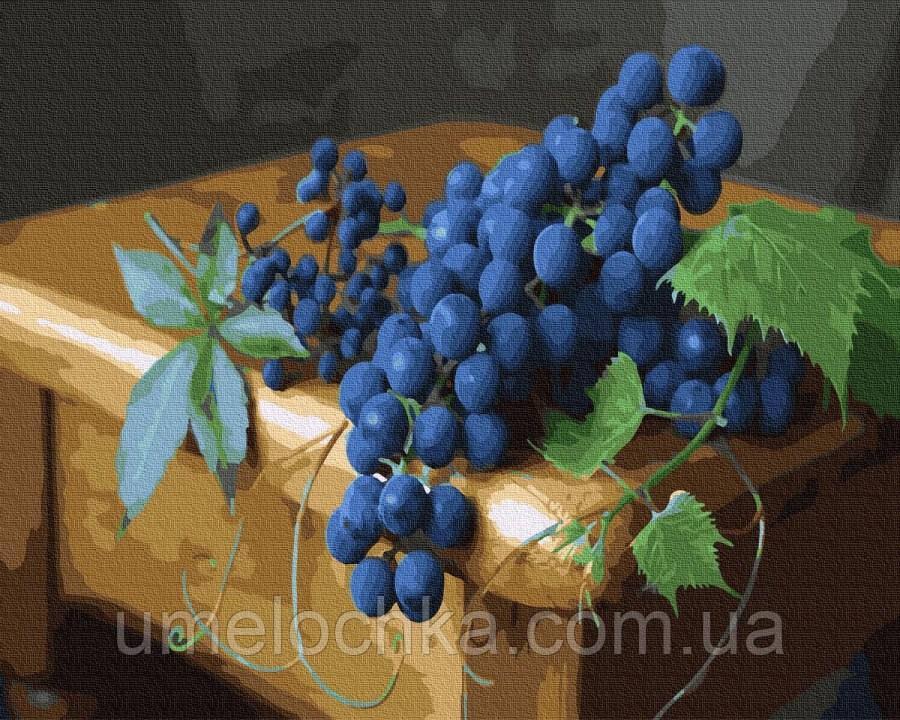 Раскраска по цифрам  Спелая гроздь (BK-GX30592) 40 х 50 см (Без коробки)