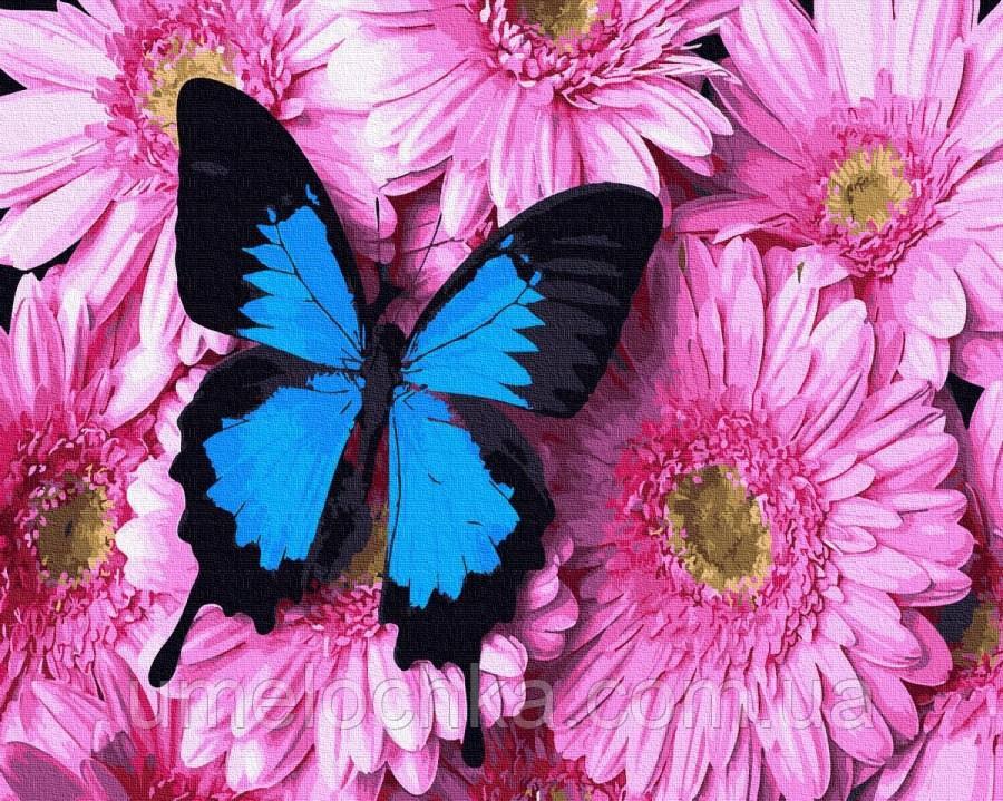Картина по номерам  Бабочка на хризантемах (BK-GX34056) 40 х 50 см (Без коробки)