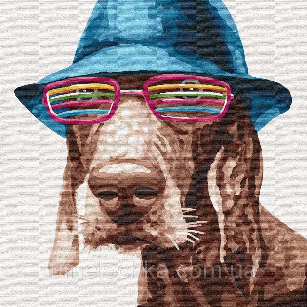 Картина по номерам Идейка Стильный пес (KHO4193) 30 х 30 см (Без коробки)