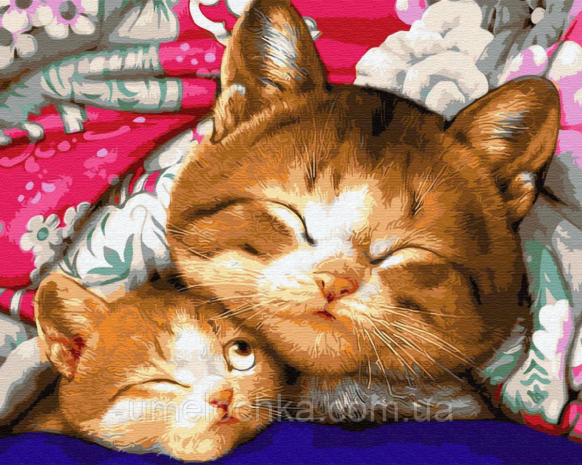 Картина по номерам  Котенок с мамой (BK-GX9765) 40 х 50 см (Без коробки)