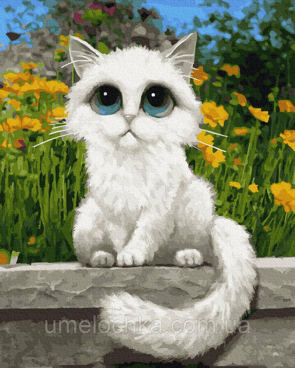 Картина по номерам  Кошачьи глазки (BRM22771) 40 х 50 см