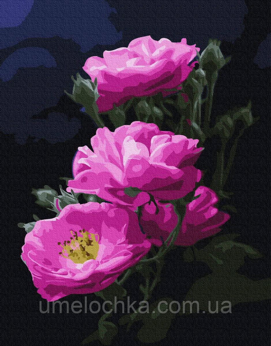 Картина по номерам Розовый шиповник (BK-GX24788) 40 х 50 см (Без коробки)
